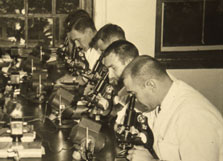In the 1950's, veterinary medical students relied on the microscope as their primary diagnostic tool.