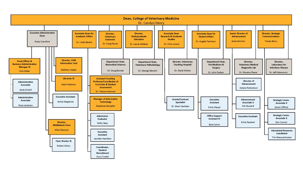CVM Organizational Chart