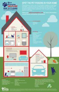 Preventing Pet Poisonings