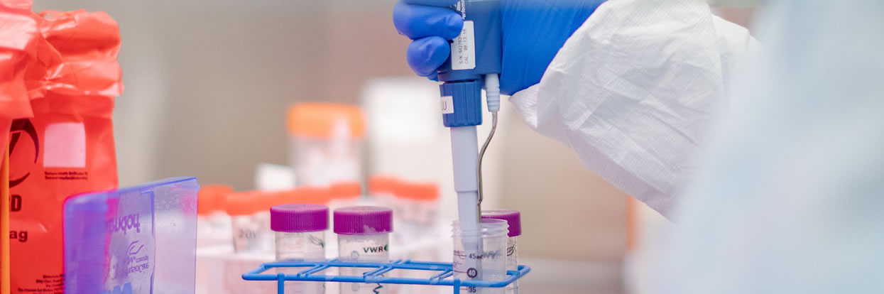 Veterinary Medical Diagnostic Laboratory Collaborates with MU Health Care to Expand COVID Testing