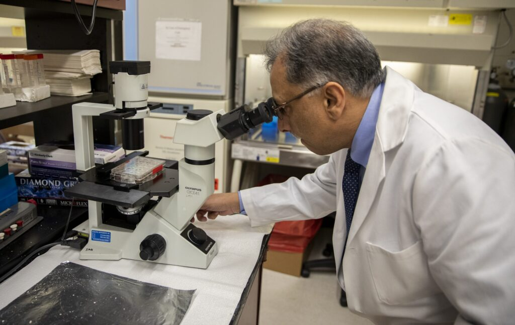 Hyder examines a sample under a microscope in his lab where he has spent years researching drugs and natural compounds to stop breast cancer.
