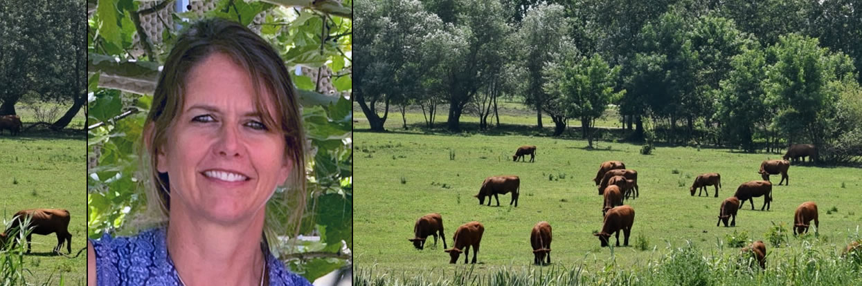 CVM Alumna to Address Biosecurity at Pearls of Production Program