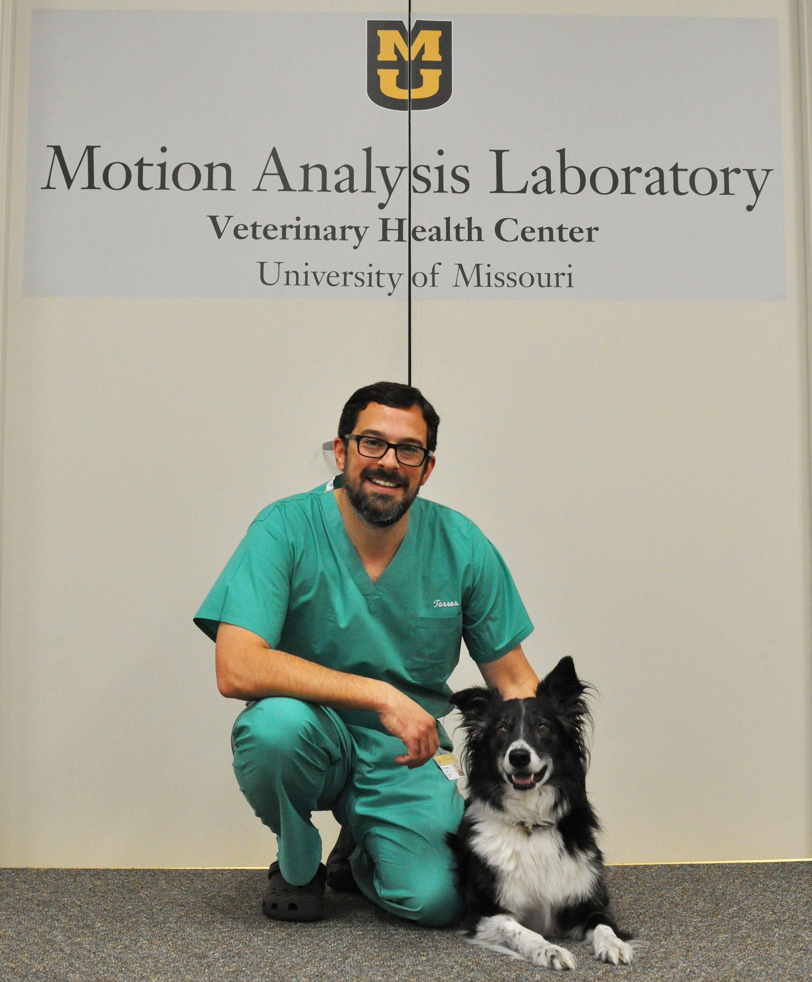 """Bryan Torres, an assistant professor of small animal orthopedic surgery, is the director of the Motion Analysis Laboratory at the MU College of Veterinary Medicine. Using pressure-sensitive plates and specialized cameras that photograph """"markers"""" placed in strategic areas on the patient, he is able to analyze how dogs move in real time."""