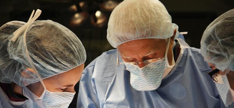 Veterinary Medicine and Surgery