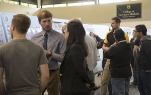 During the 42nd annual CVM Research Day DVM students, interns, residents, master's and PhD students, and postdoctoral fellows, presented their research findings in a poster or lecture format.